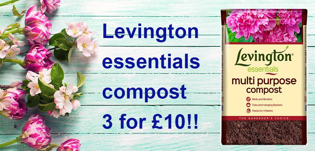 levington1